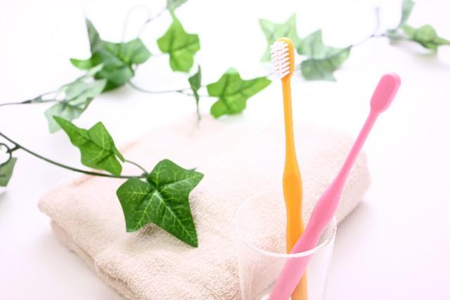 【歯磨きがめんどくさい人向け】歯を磨く3つのコツ