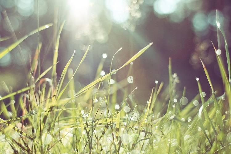 人生疲れた?つらい毎日から抜け出し、穏やかな明日を迎える方法