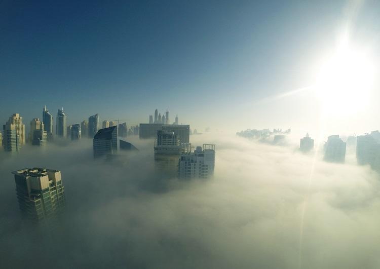 もやもやした朝の霧