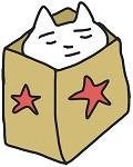 紙袋の中でボーっとする猫