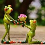 プロポーズするカエル