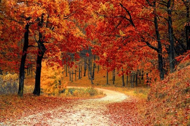晩秋の夕暮れに思い出すメロディとからっぽの季節