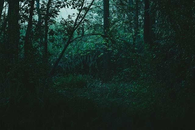 世界が闇に包まれて恐怖に震えている人はいますか?