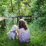 女の子と白い犬