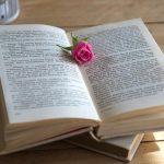 本とピンクのバラ