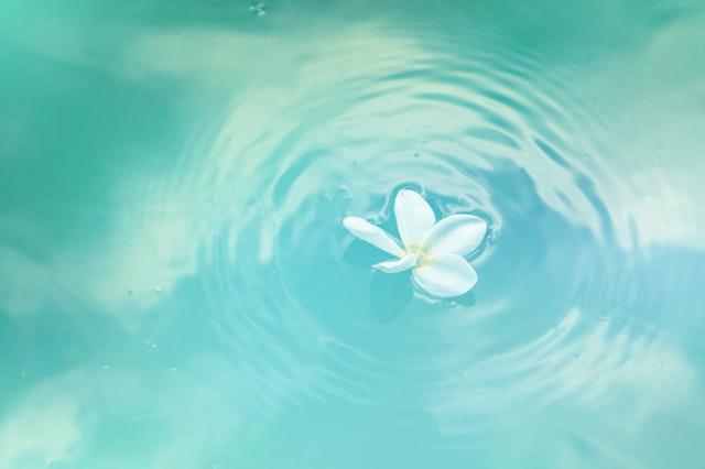 苦痛を和らげ、穏やかな心を育てるプログラム「幸せになる15ヶ条」