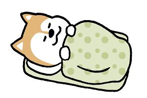 犬「寝ます」
