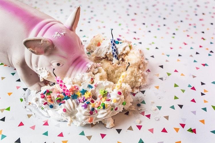 ケーキをぐちゃ~っとするブタさん(汚い)