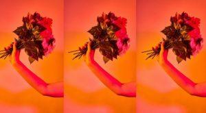 花束花束花束
